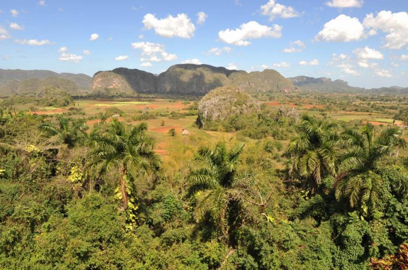 La splendide vallée de Pinar del rio