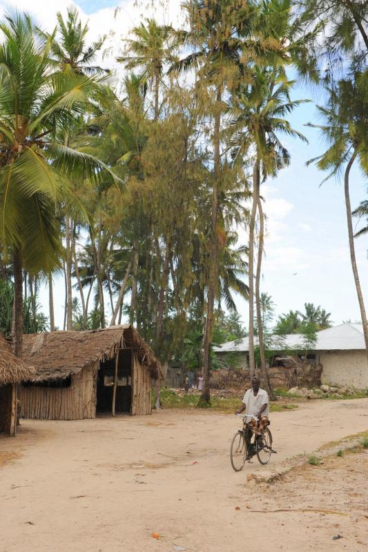 Village de Nungwi