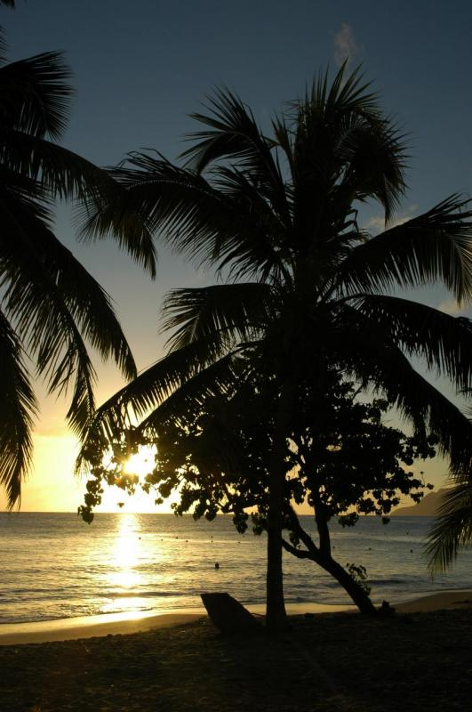 Martinique (Décembre 2007)