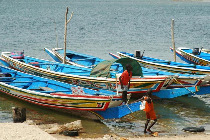 Dans le delta du Siné Saloum